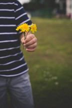 boy child holding dandelions
