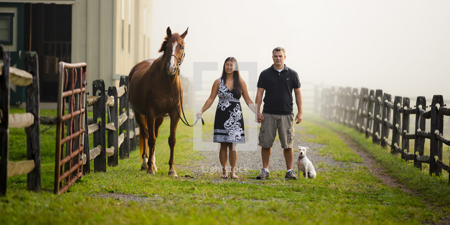 man and woman holding hands leading a horse