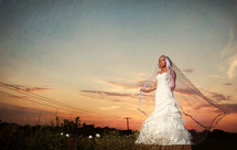 Bride in field at sunset