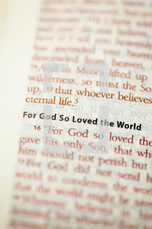 John 3:16  FOR GOD SO LOVED THE WORLD