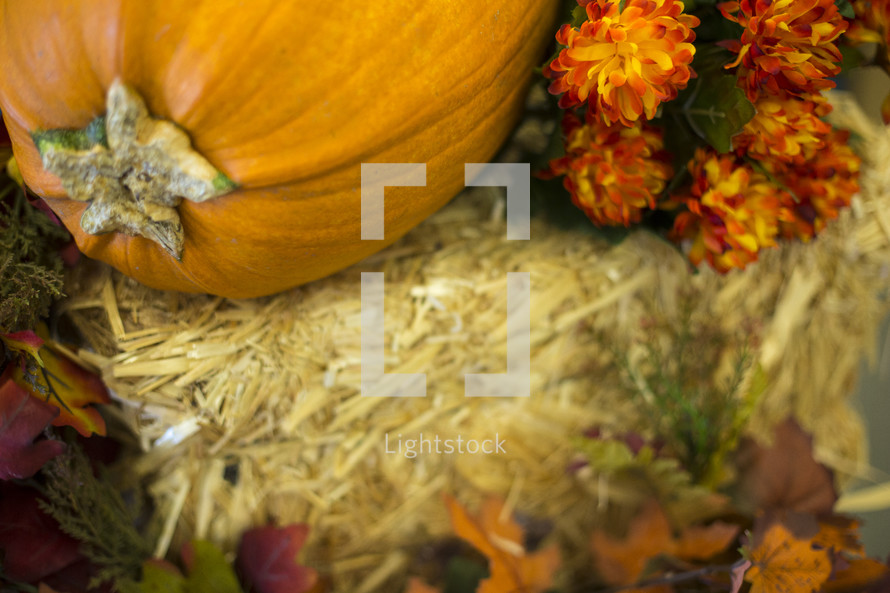 Pumpkin lying on top of hay stack with mums and fall leaves.