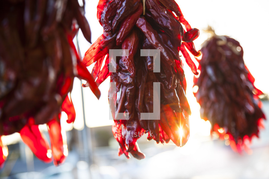 chili peppers drying
