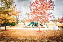Fall foliage at a park.