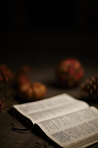 A Bible and Fall decor