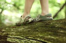 Walking on a tree