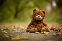 old teddy bear in leaves on a sidewalk