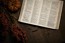 Bible laying open on table with small pumpkin and berry branches.