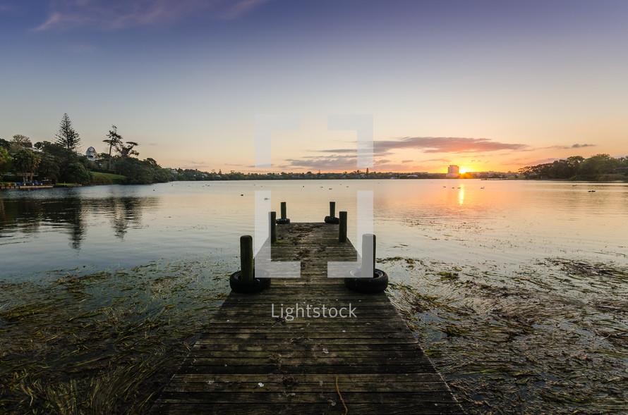 dock in swampy lake water