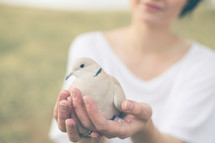 Woman standing outside holding a dove.