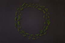 juniper pine in wreath circle