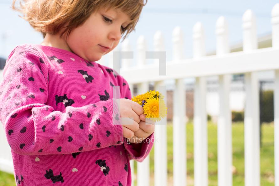 toddler holding dandelions