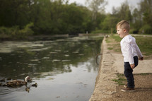 A toddler boy excited to see ducks in a pond