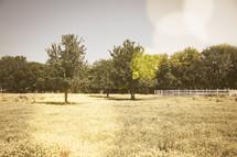 a white fence on farmland