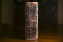 spine of an old leather Bible