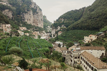 vineyard in a Valley In Italy