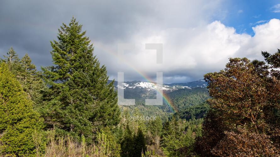 rainbow over Redwood Creek