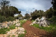 trail on a hillside