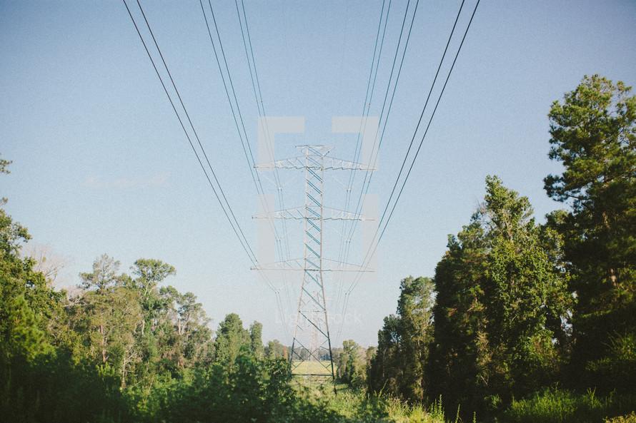 Power lines in tree-lined field.