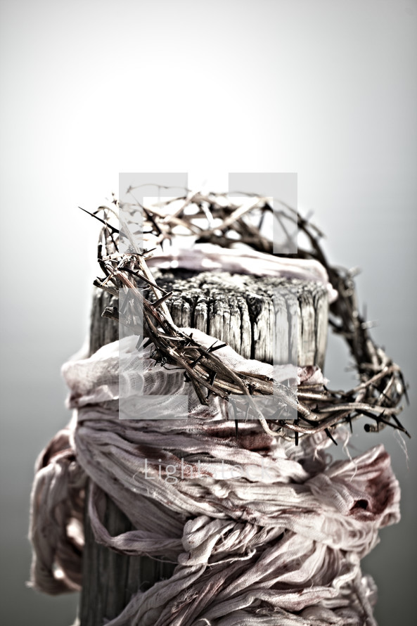 The crown and rags of Christ