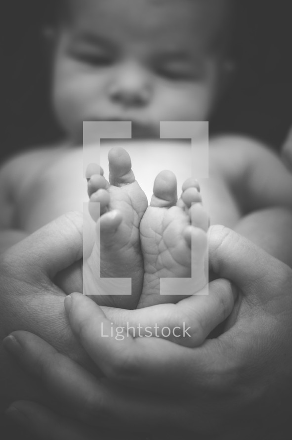 cupped hands holding newborn baby feet