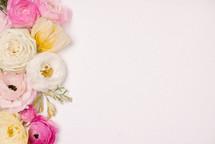border of flowers on white