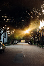 sunburst through the tress over a neighborhood street