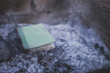 Book in a pile of ashes.