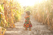 toddler girl standing in a corn field