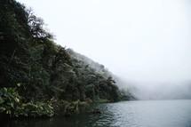 fog along a lake shore