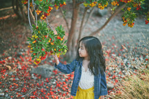A little girl picking fruit from a tree.