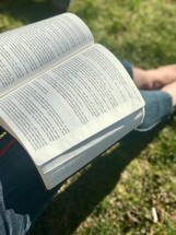 reading a Bible sitting in the grass