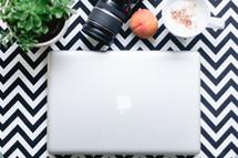 laptop, camera, succulent plant, peach, mug