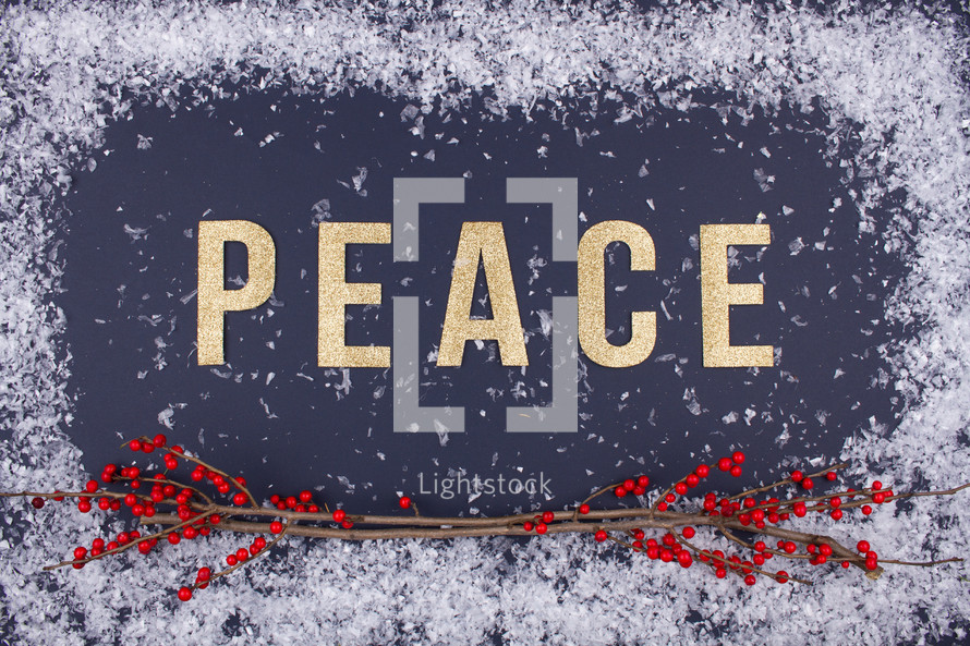 word peace and red berries with a snow border