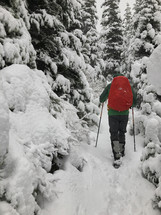 a man hiking through a winter forest in snow