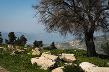 View of the Sea of Galilee and the Golan Heights from Umm Qais, Jordan