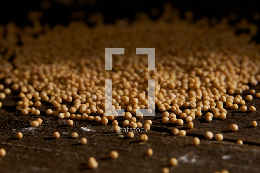 Pile of mustard seeds on wood table