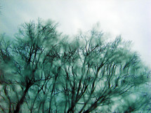 A wet blurry window showing the cold and bare trees of winter time where the air looks sharp and cold and the sky dark and cloudy.