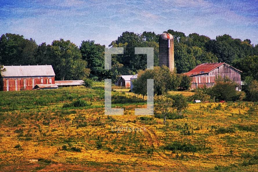 Old farm field