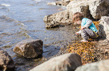 a child looking for shells along a shore