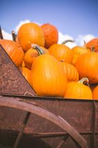 pumpkins in a rusty wagon