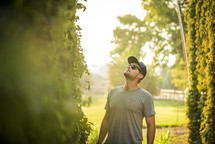 a man looking up at green vines