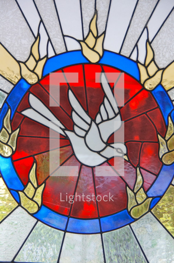Stained church glass window - Holy Spirit dove - Baptism of Holy Spirit
