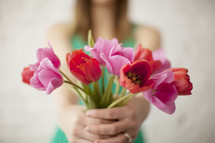 woman holding red and pink tulips