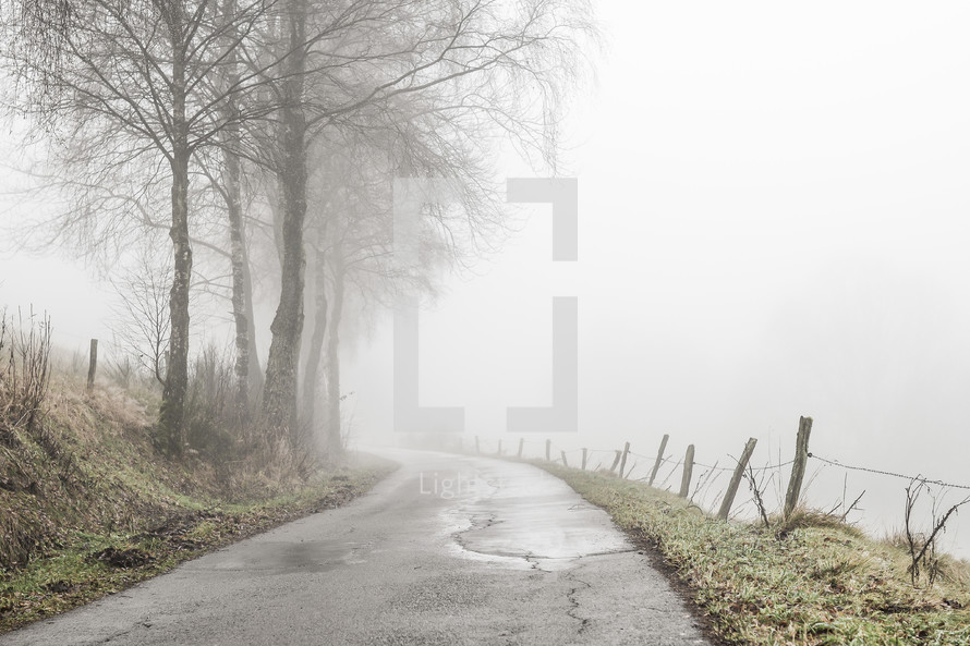 a narrow rural road in fog