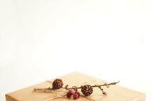 twine and pine cones on a wrapped gift box
