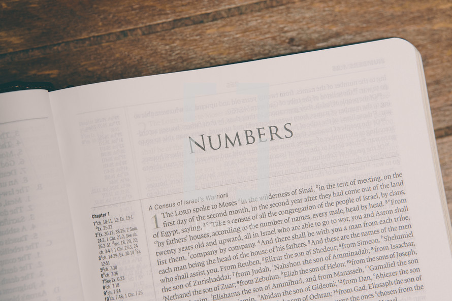 Bible opened to Numbers