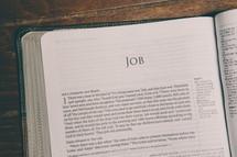 Bible opened to Job