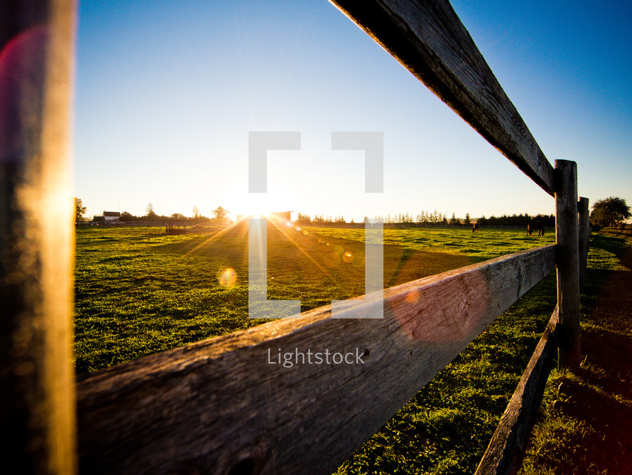 sunlight and a fence