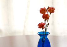 carnations in a blue vase
