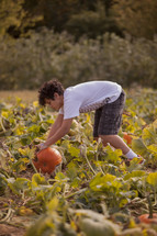 boy child picking out a pumpkin in a pumpkin patch